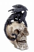 Dragon Familiar Skull Figurine Ornament Gothic Decor Fantasy Art
